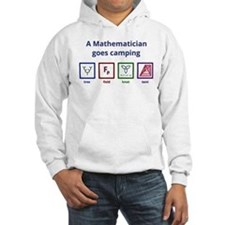 A Mathematician goes camping Hoodie