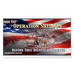 Operation Sheldon 2 Decal