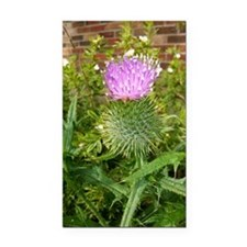 Thistle Rectangle Car Magnet
