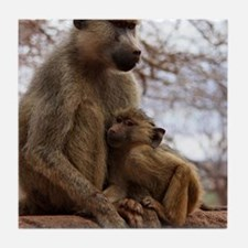 monkey mother with baby Tile Coaster