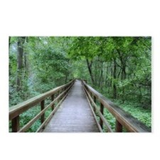 away through the forest Postcards (Package of 8)