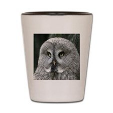 Owl001 Shot Glass
