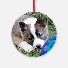 IcelandicSheepdog013 Round Ornament