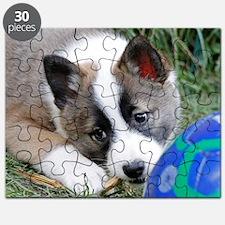 IcelandicSheepdog013 Puzzle