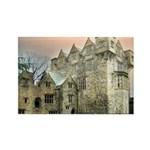 Donegal Castle Magnets (10 pack)