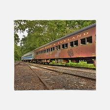 Classic Train Cars Throw Blanket