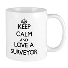 Keep Calm and Love a Surveyor Mugs