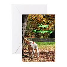 Thanksgiving Ram Greeting Cards
