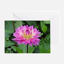 Purple Yellow Dahlia Greeting Card