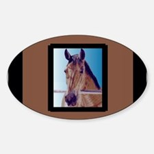 Beautiful Western Horse Decal