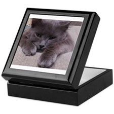 Sweet Sterling baby kitten Keepsake Box
