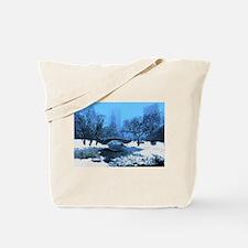 central-park-new-york-winter1 copy Tote Bag