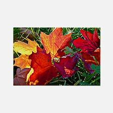 Fallen autumn leaves Magnets