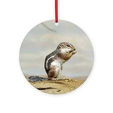 Gopher003 Round Ornament