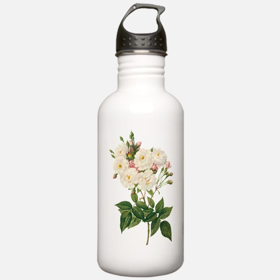 Vintage Blush Noisette Water Bottle