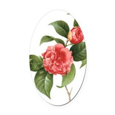 Vintage Flowers Camellias by Redou Oval Car Magnet