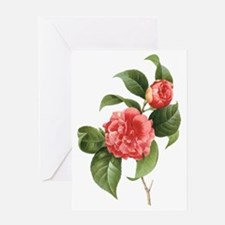 Vintage Flowers Camellias by Redoute Greeting Card