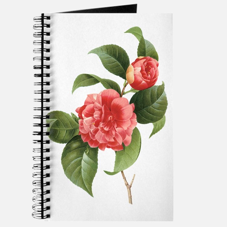 Vintage Flowers Camellias by Redoute Journal