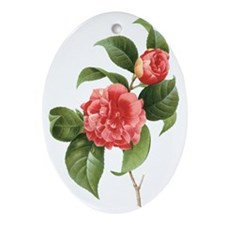 Vintage Flowers Camellias by Redoute Oval Ornament
