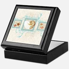 Cute Shell Keepsake Box
