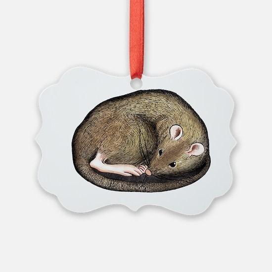 sleep Ornament