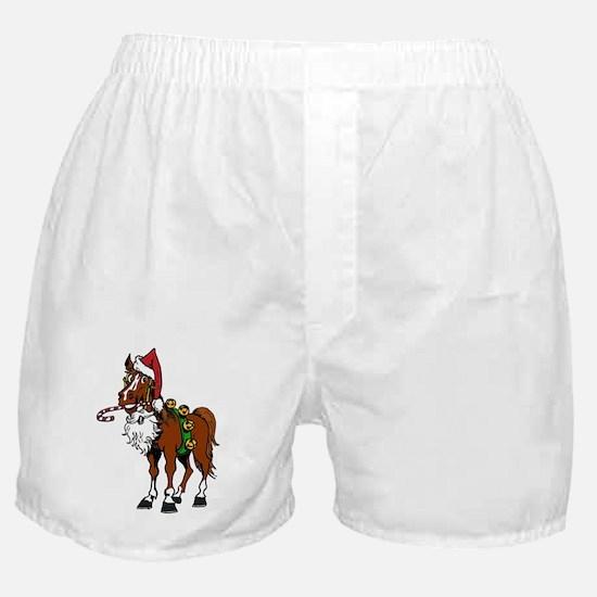 pony wearing santa hat Boxer Shorts