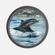Fraser's dolphins Wall Clock
