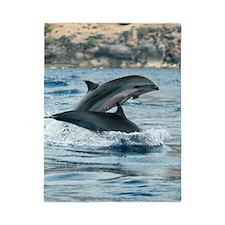 Fraser's dolphins Twin Duvet