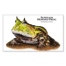 Surinam Horned Frog Decal
