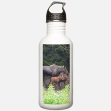 PhoneCase_moose_02 Water Bottle