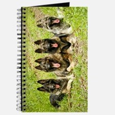 2013 Semper Fi Shilohs Journal