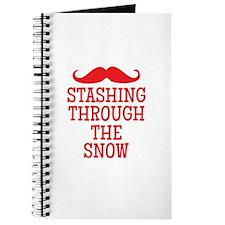 STASHING thru the snow Journal