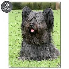 Skye Terrier 9Y766D-031 Puzzle