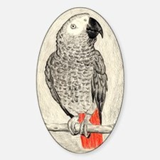 African Grey in Pencil Sticker (Oval)