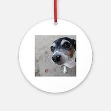 Beach Rat Terrier  Round Ornament