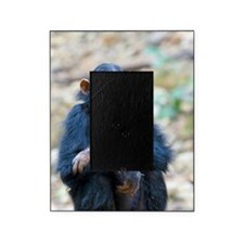 Relaxing Chimp Picture Frame