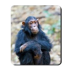 Relaxing Chimp Mousepad