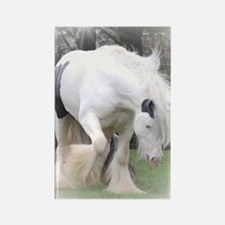 All Whites stallions Rectangle Magnet