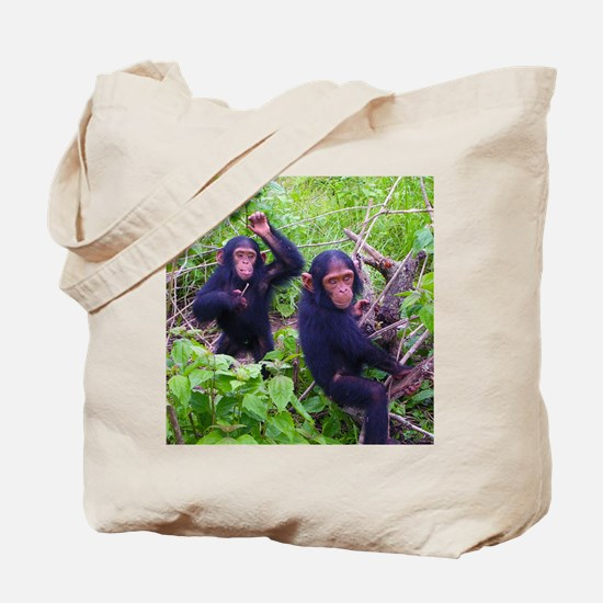 Two Chimps Playing Tote Bag