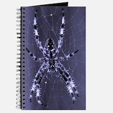 Spider XRay Journal