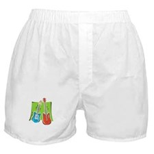 guitar and bass stylized Boxer Shorts