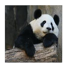 Panda-MP Tile Coaster