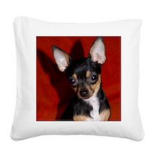 Abbey3-10x10 Square Canvas Pillow