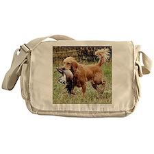 fd100310b140_Tshirt Messenger Bag
