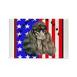 Black Poodle Rectangle Magnet (10 pack)