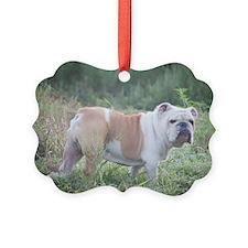 Mack the Bulldog Picture Ornament