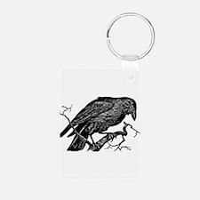 Vintage Raven in Tree Illustration Aluminum Photo