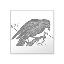 Vintage Raven in Tree Illustration Square Sticker