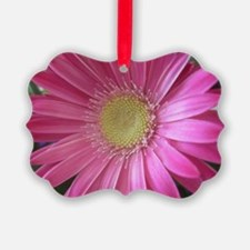 Pink Daisy Ornament