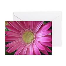Pink Daisy Greeting Card